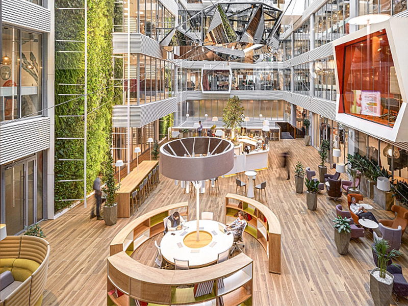 biophilic-design-and-the-natural-environment.jpg