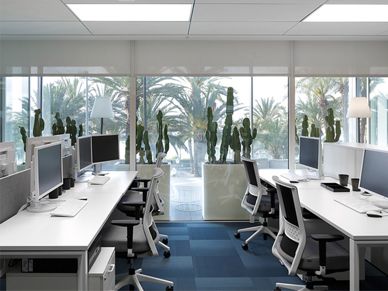 working-executive-offices.jpg